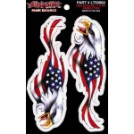 Mini Decal Usa Eagles LT&RT